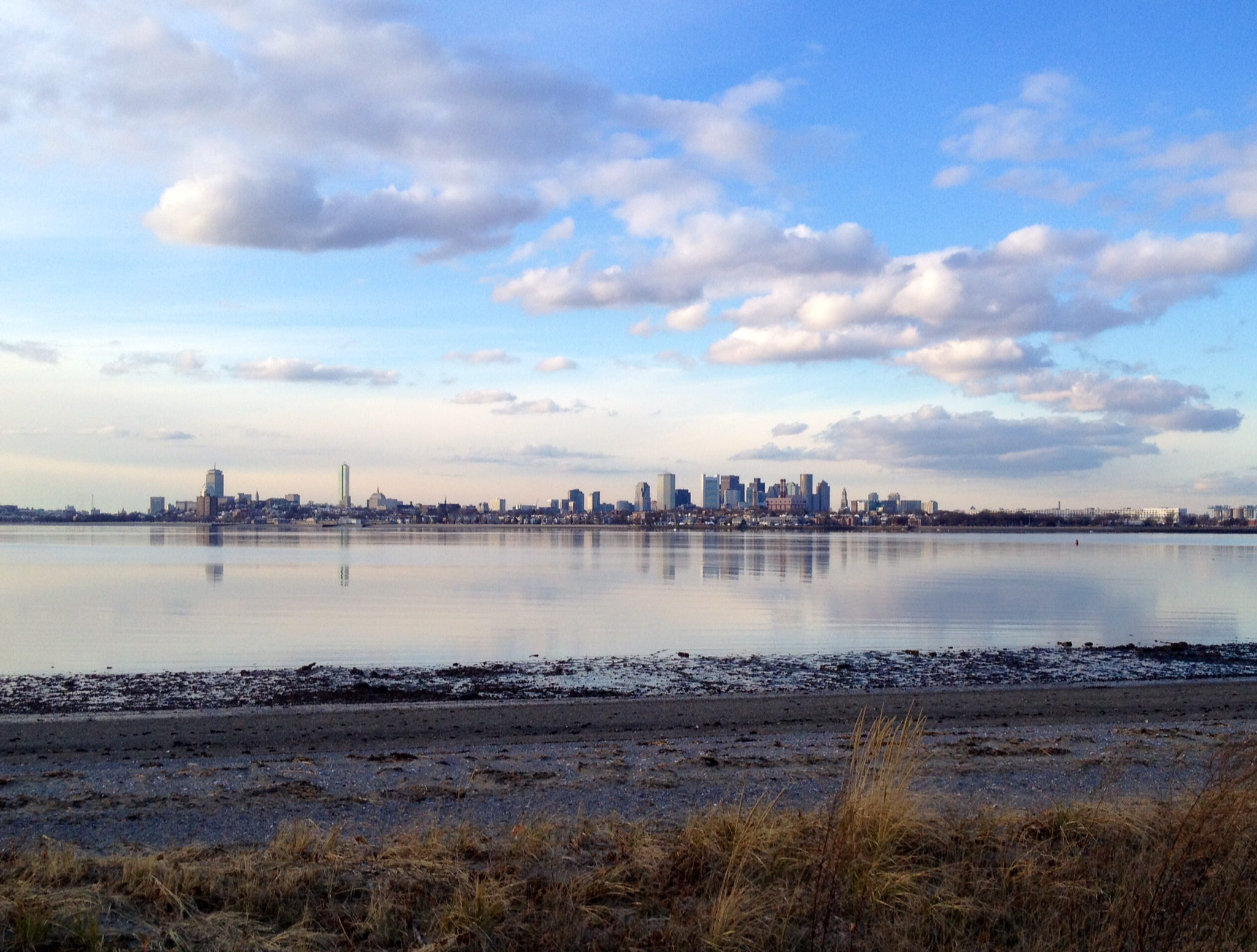 View of Boston from our western shore. Photo courtesy of Boston Harbor Beacon.