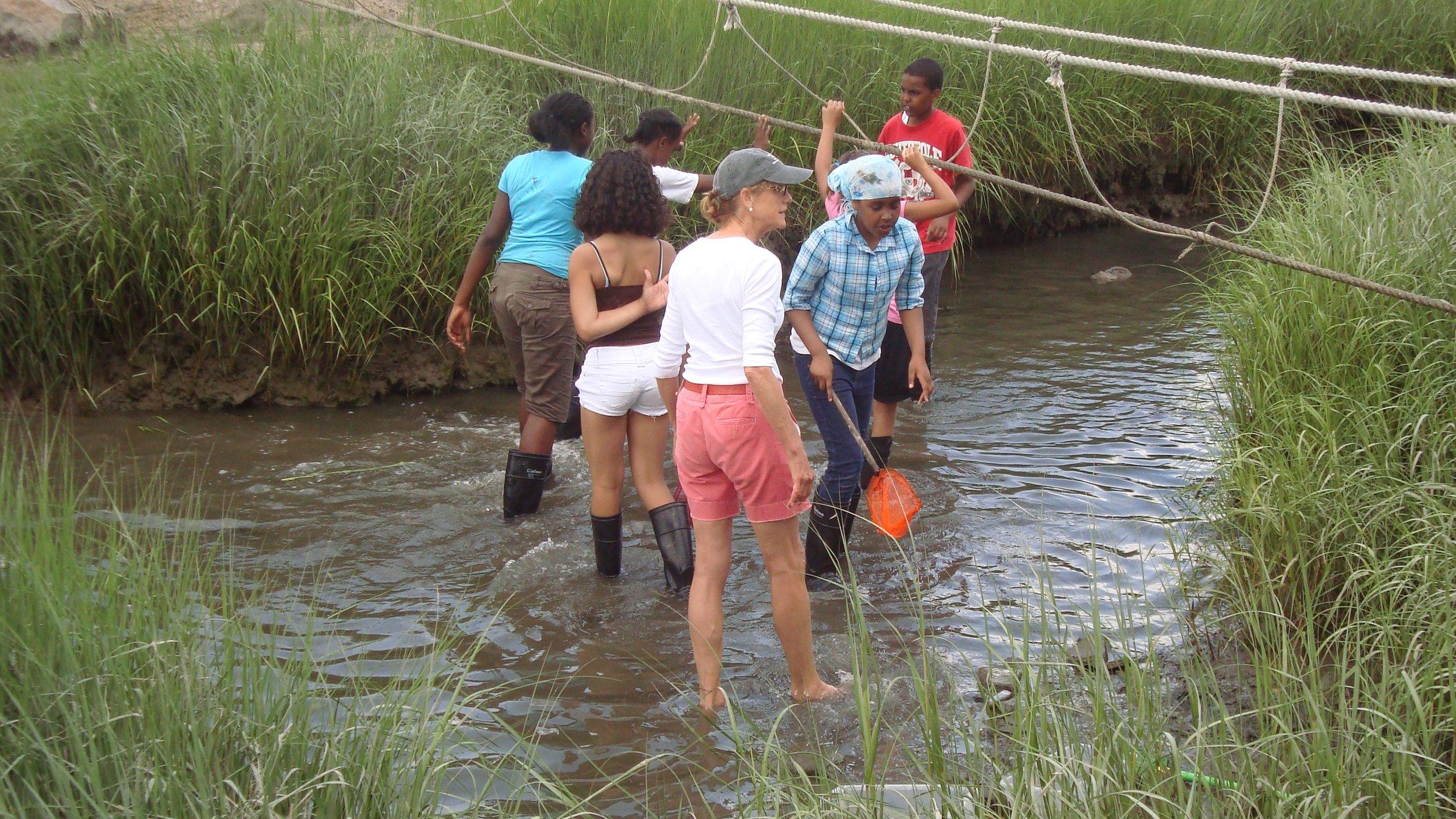 Students exploring the western salt marsh. Photo found at the  Thompson Island Wordpress.