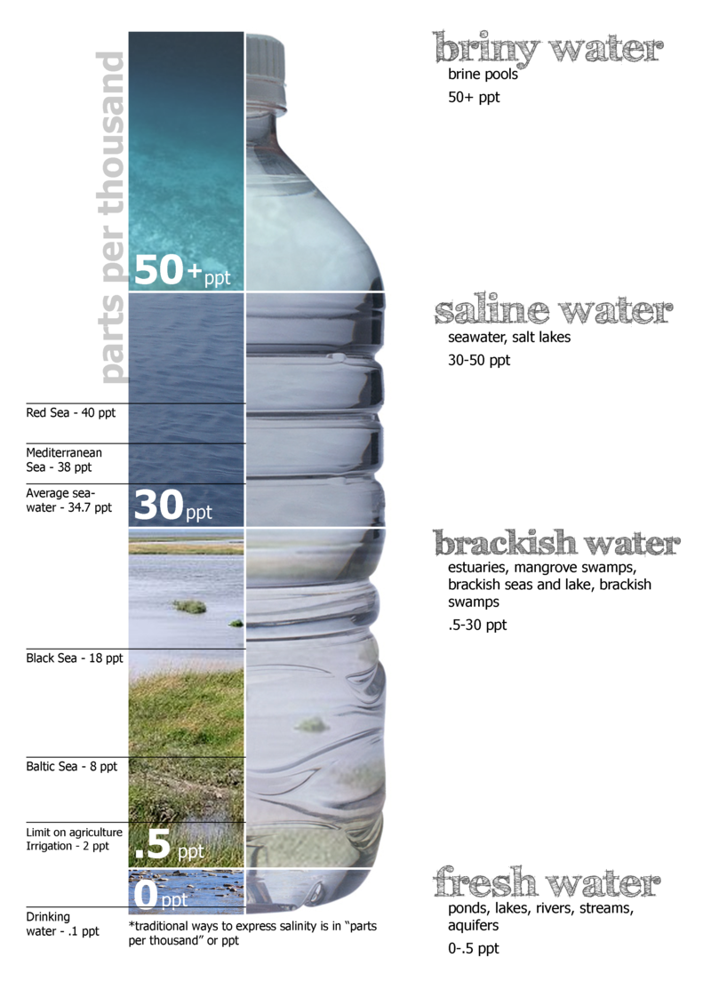 Salinity chart. Made by Peter Summerlin. Retrieved from Wikipedia.