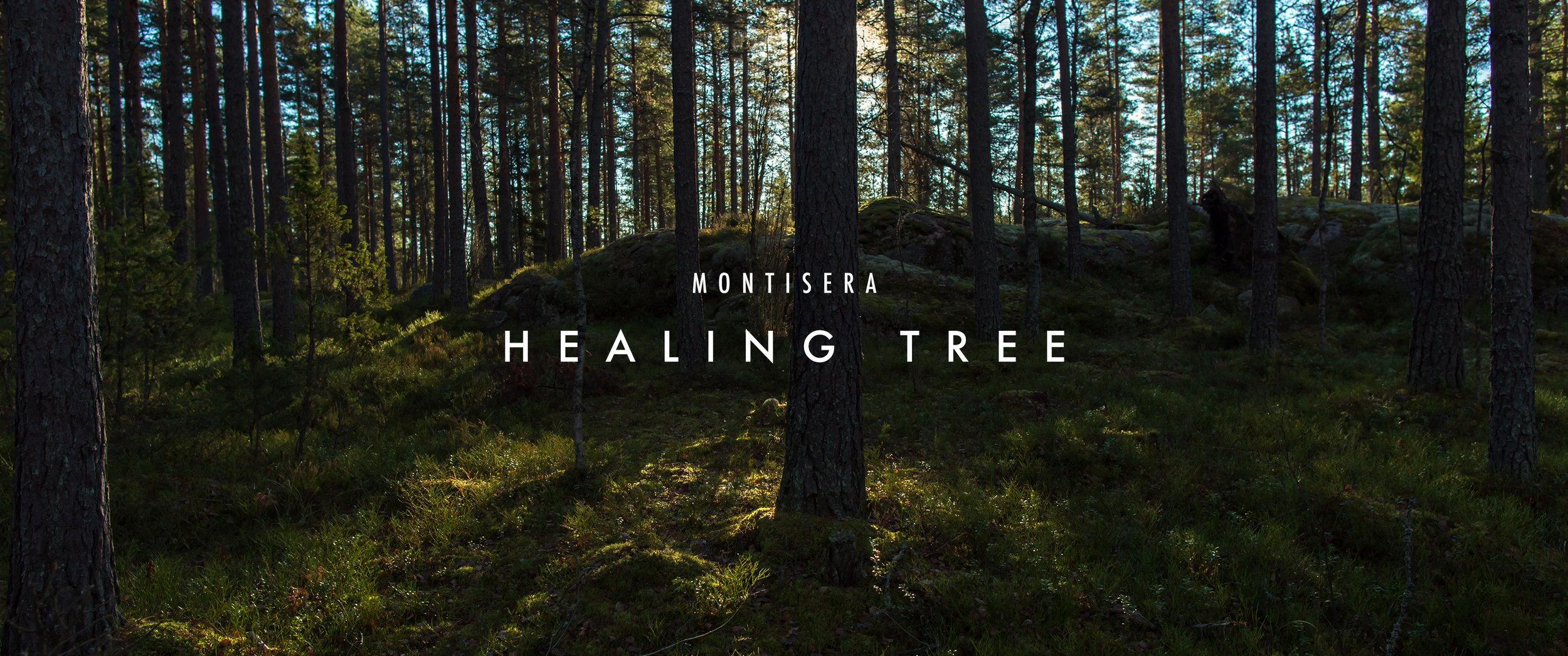 healing_tree
