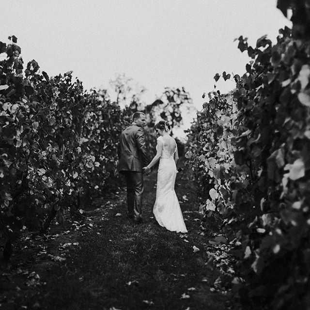 rainy day for days, so throw back to this beautiful rainy day vineyard wedding. second shot with the lovely @laura.wade.photo