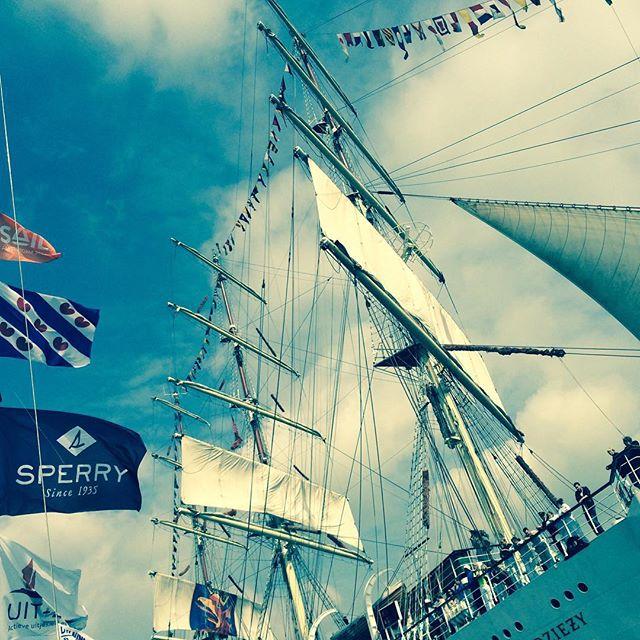 #OdysseysAwait #OdysseyProject #Sperry