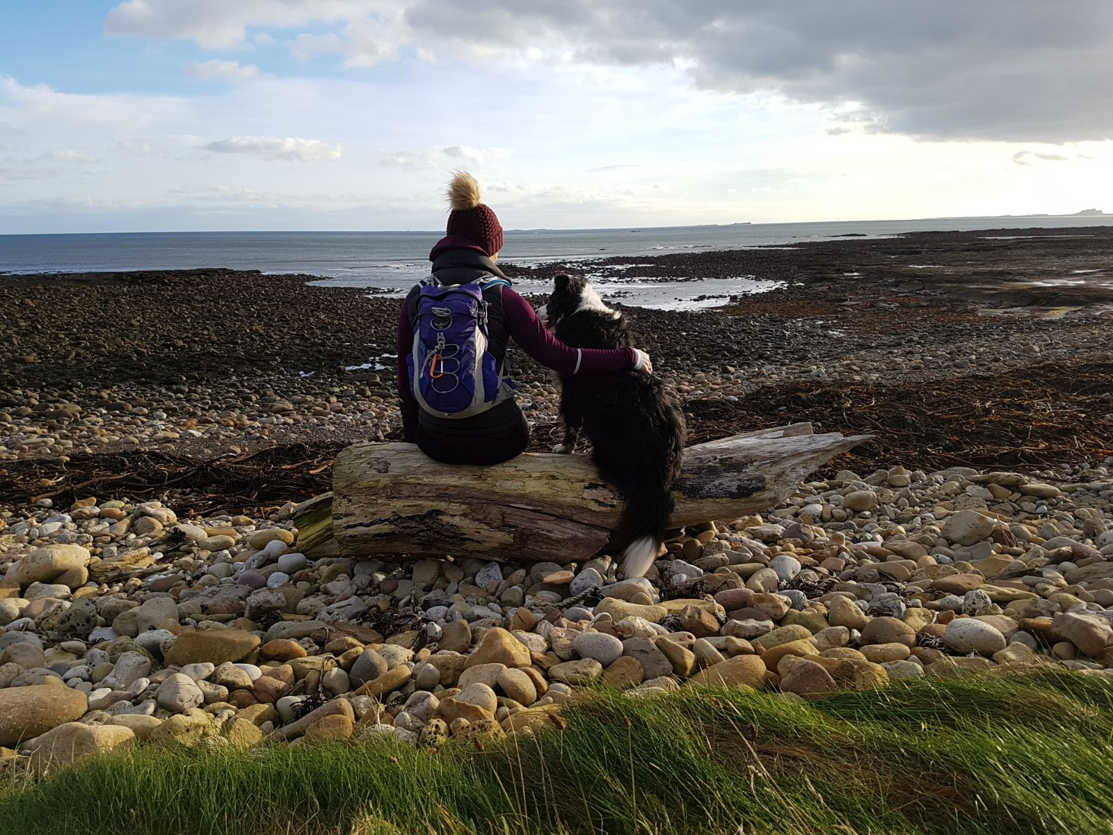 Taking in the views of the Newcastle coast from Holy Island with Gatsby