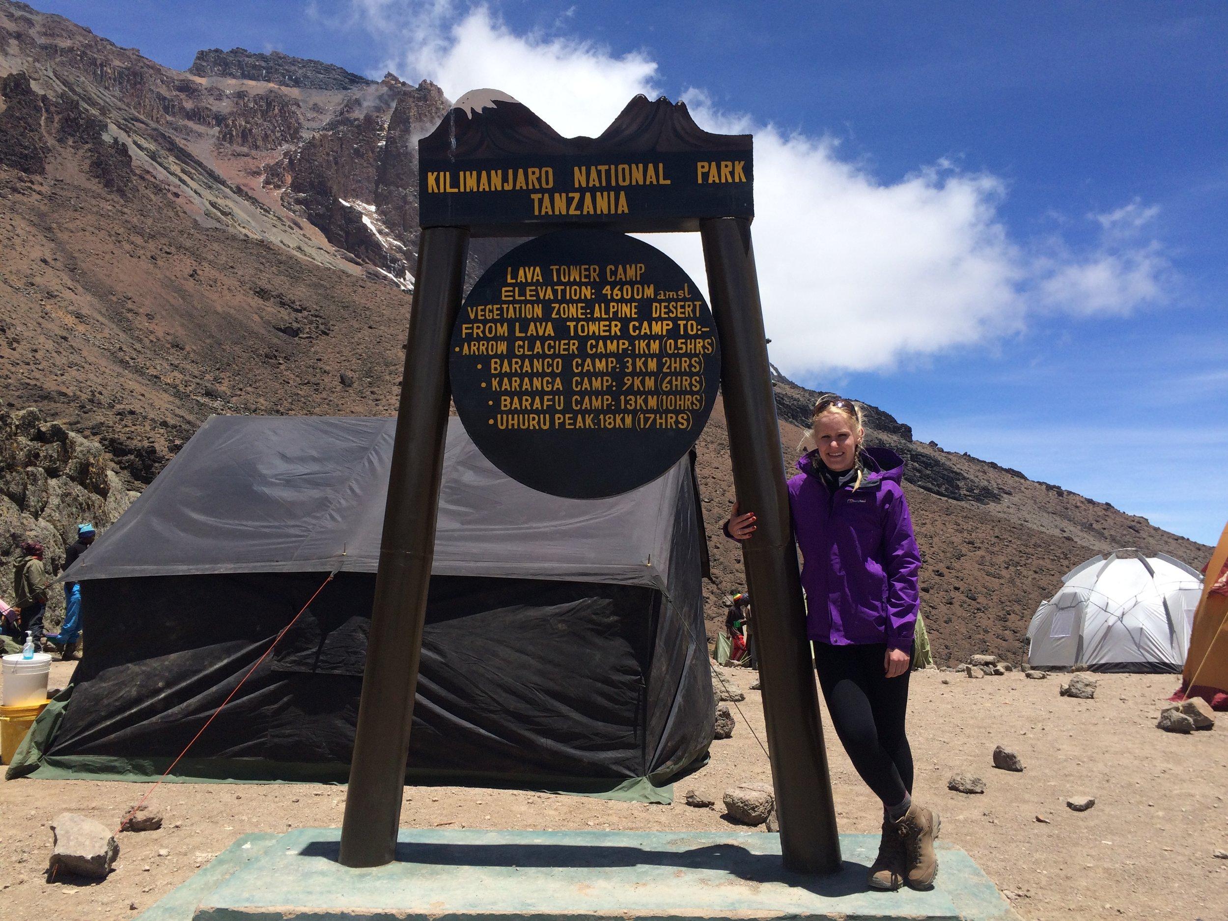Lava Tower, Mount Kilimanjaro, 4600 metres