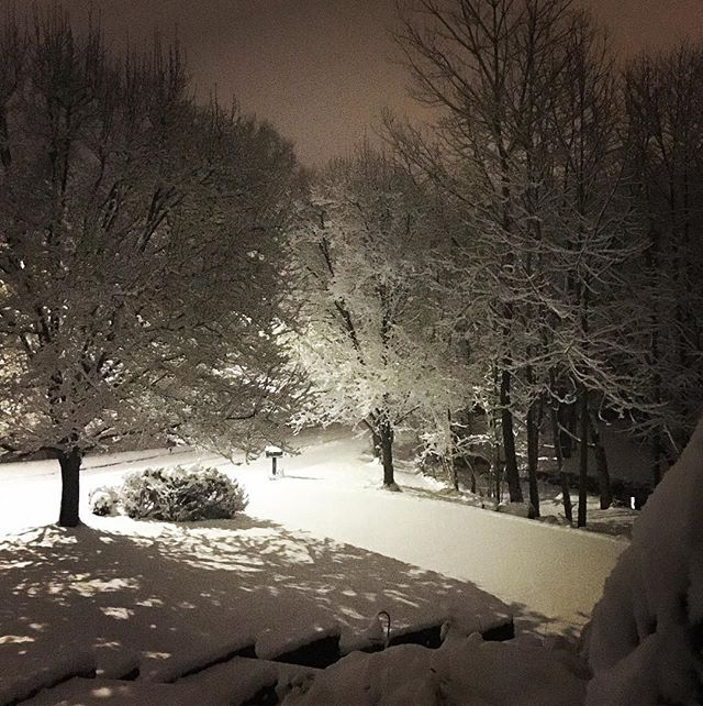 Nothing like snow in the moonlight! Or the brand new streetlights the town just installed 🙃 still pretty.... #streetsafety #glaringlybright #winterwonderland