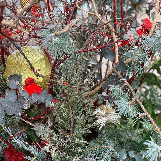 The holiday elf strikes again! #xmasdecor #foragedflora @georgiamma