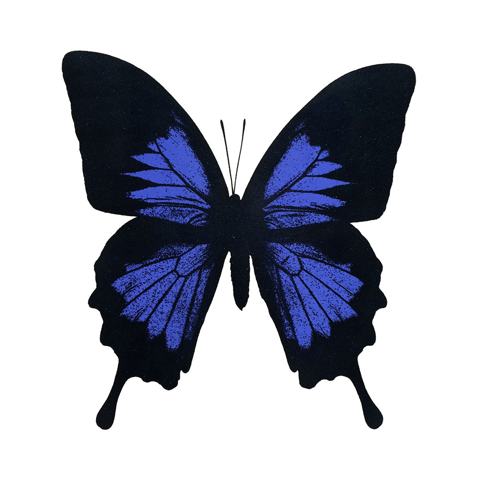 papilio Ulysses electric blue with diamond dust