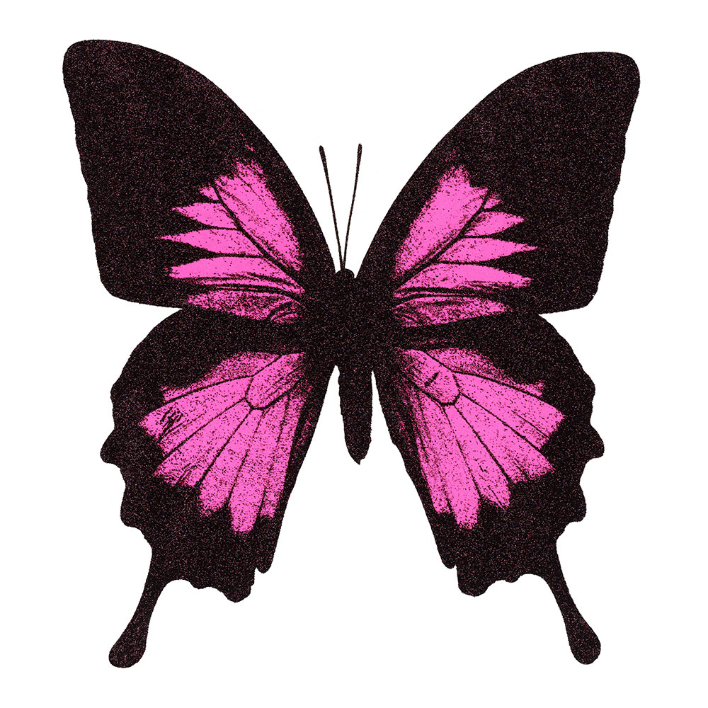 papilio ulysses neon pink with diamond dust