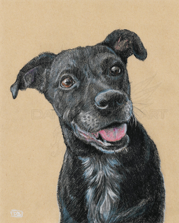 Lab Pet Portrait Commission