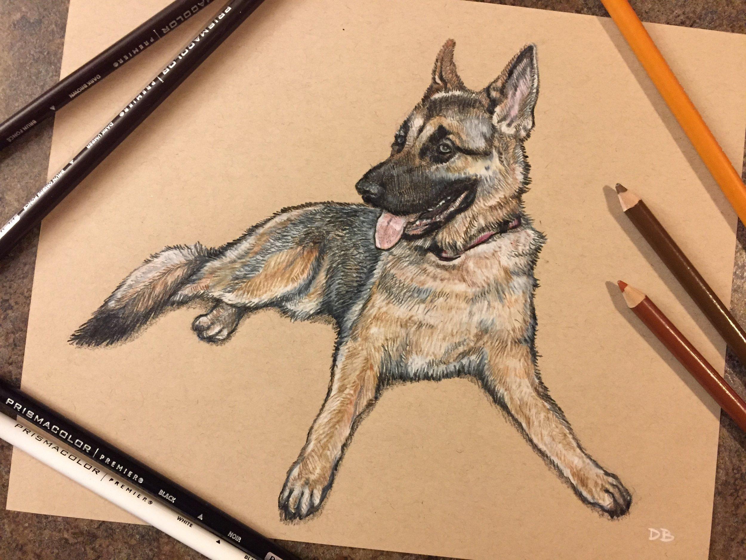 Anya Pet Portrait