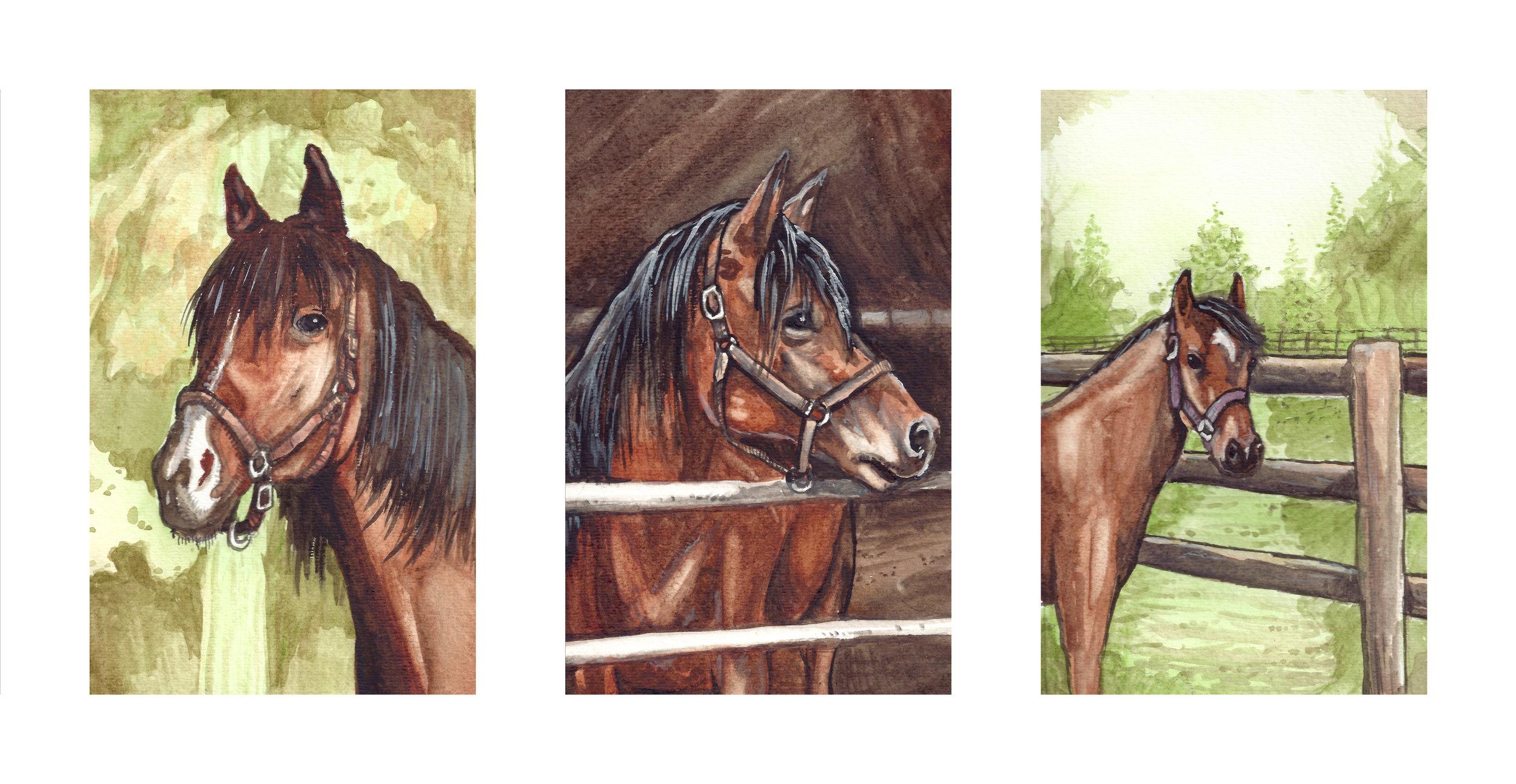 Horse Triptych Pet Portrait Commission