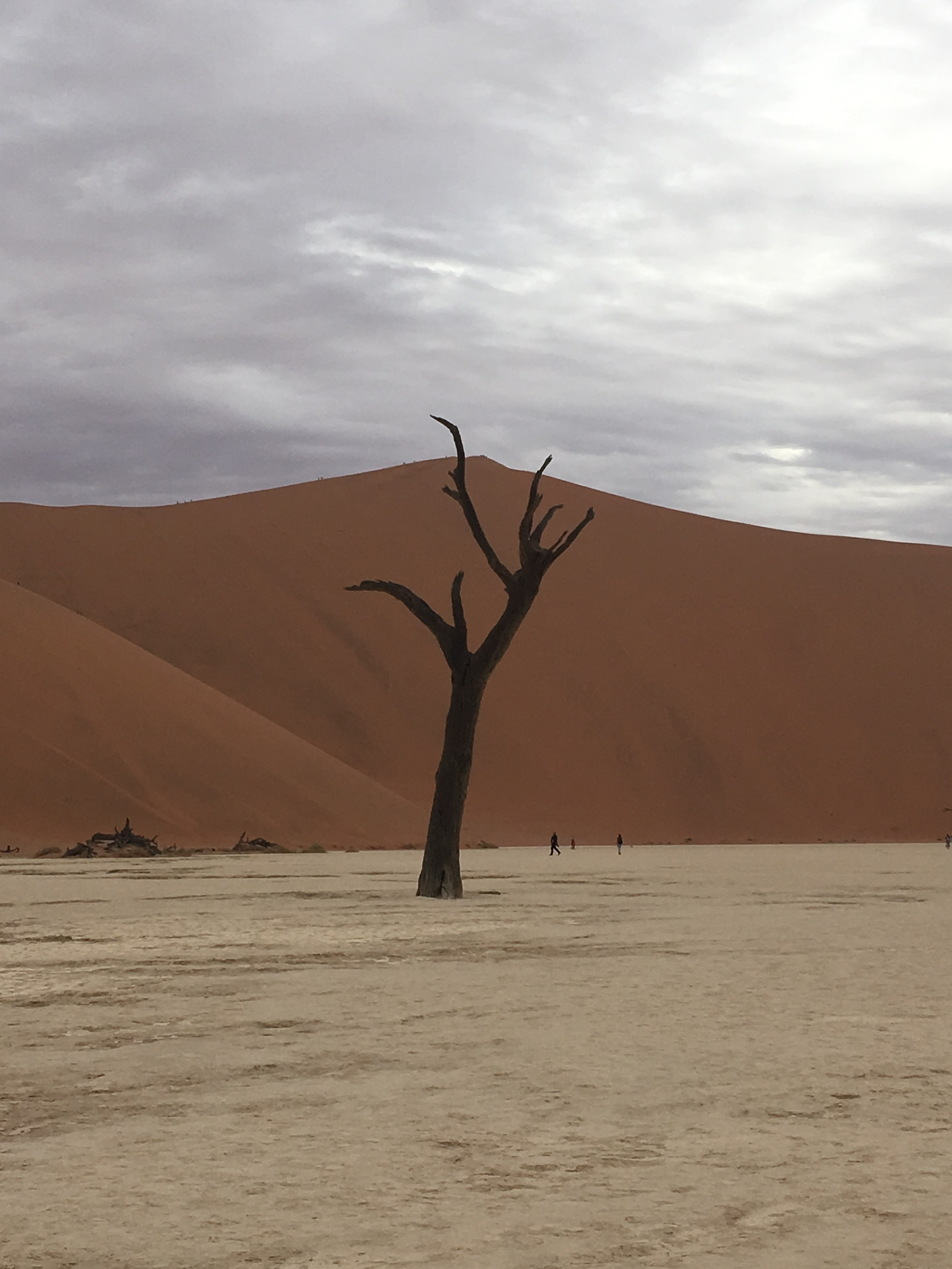 Namibia - Dawid Augustyn - SquareSpace