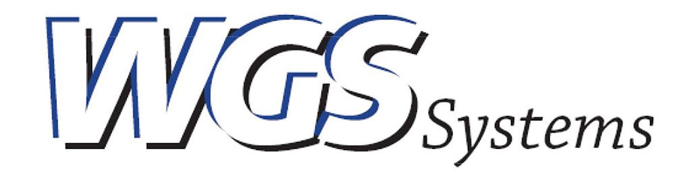 WGS-Systems-SEO-Logo-web.jpg