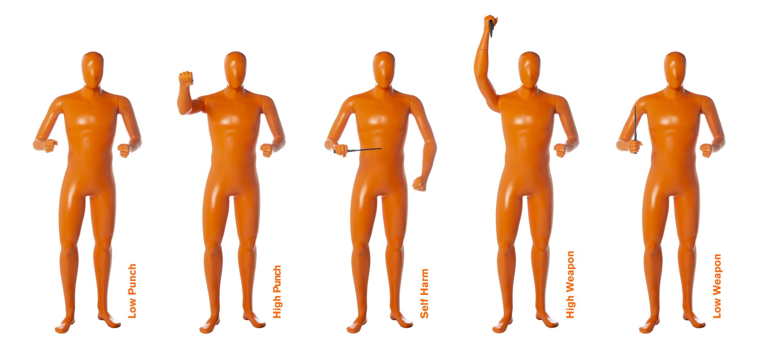 CCT_mannequin_position.jpg
