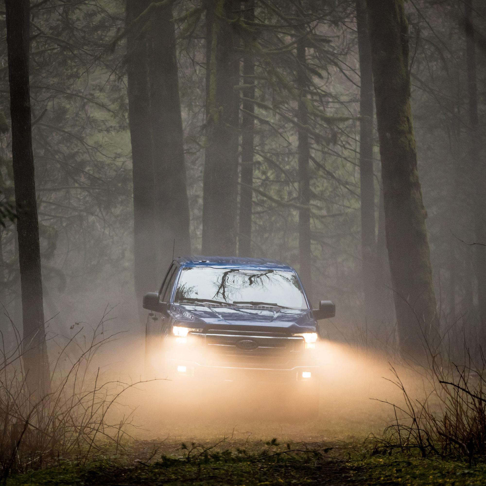 Ford-Noel-Favs-17 -0491.jpg