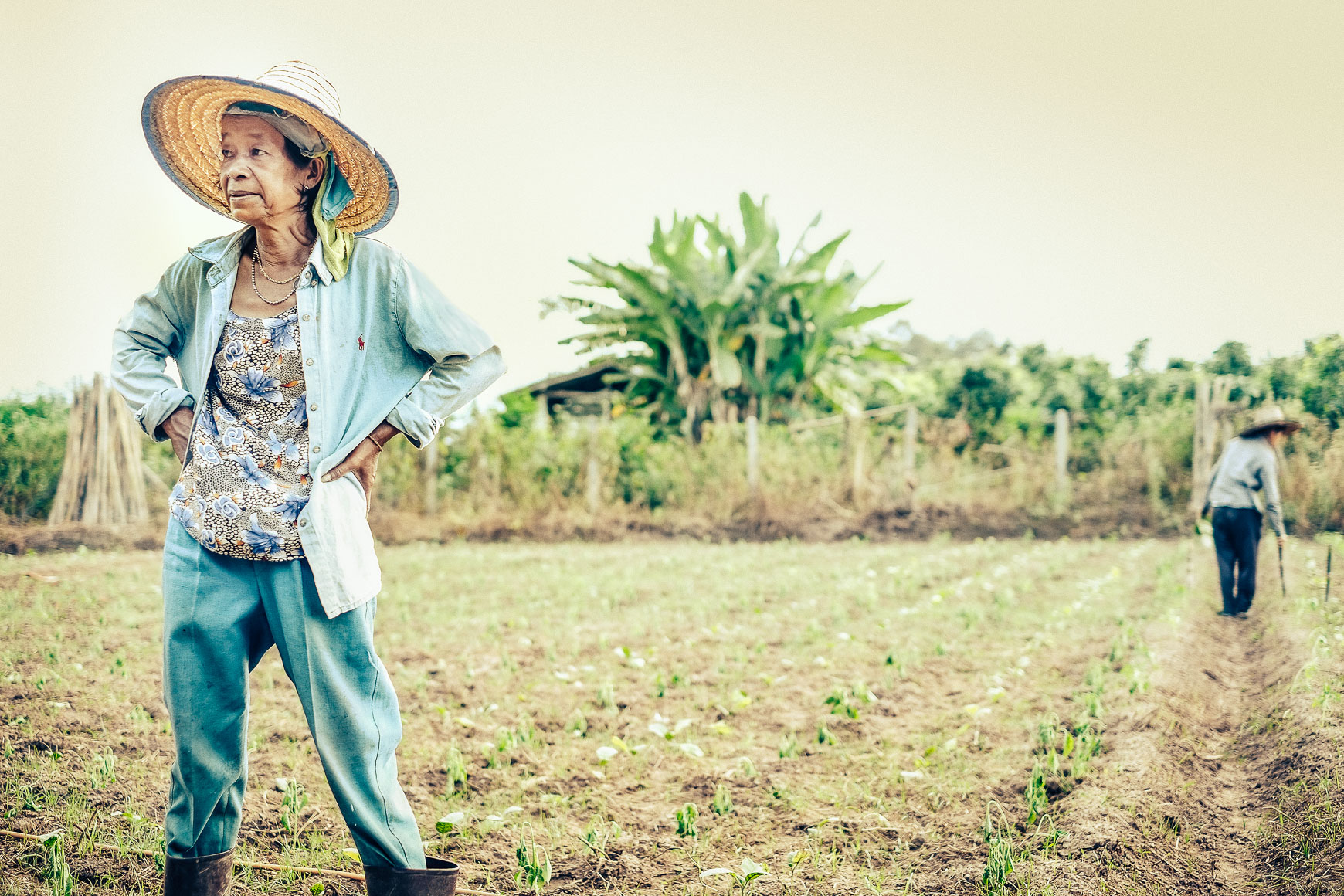 Farmer_Woman_ChiangMai.jpg