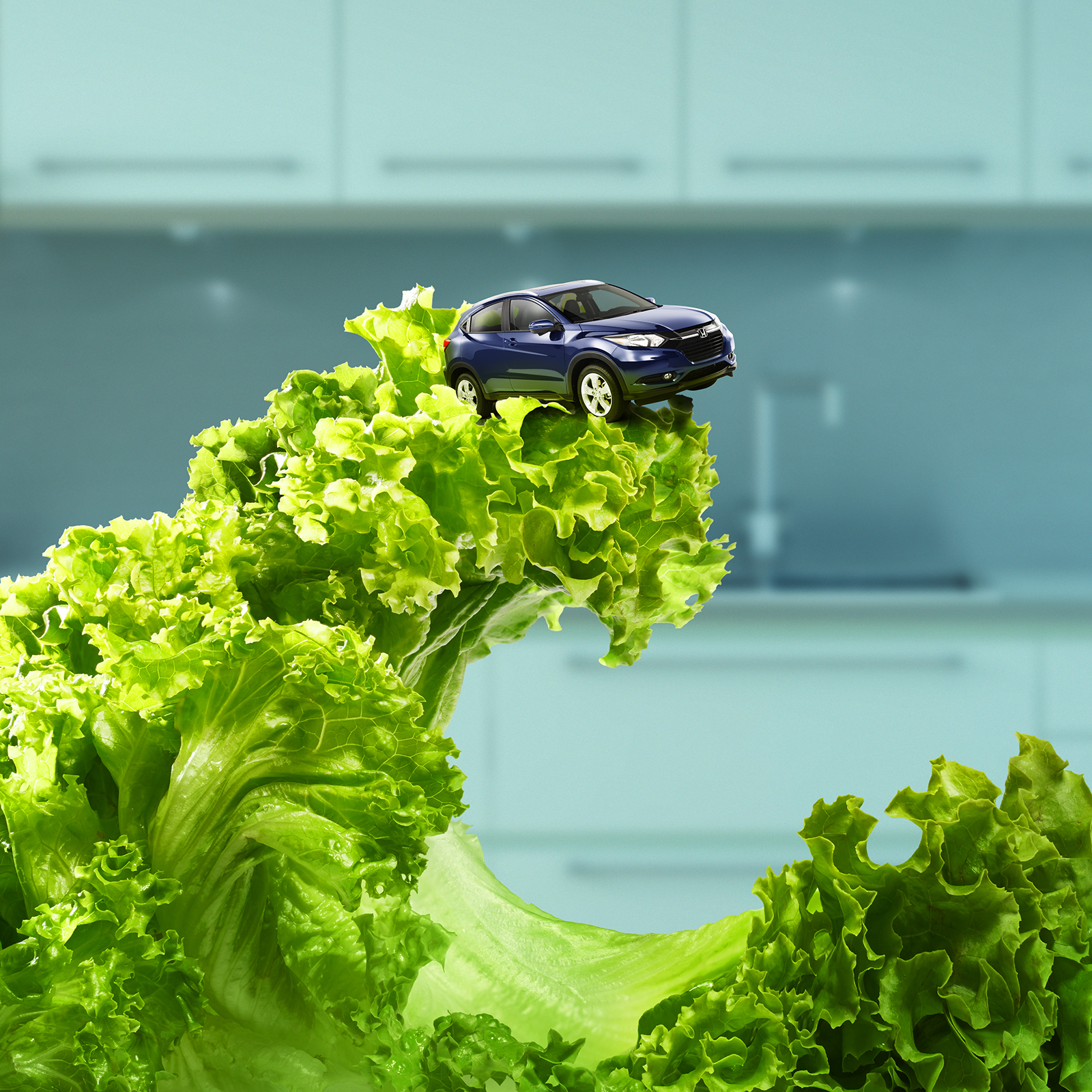 Honda_VR_Healthy.jpg