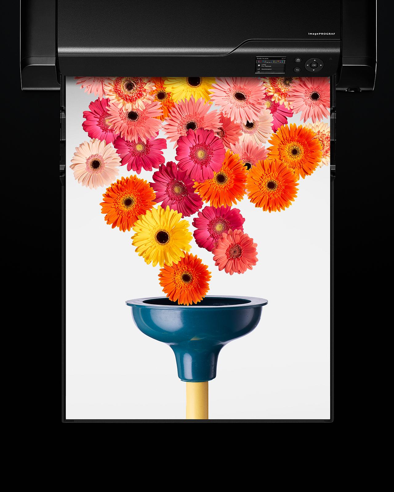 Canon_Plunger-Flowers.jpg