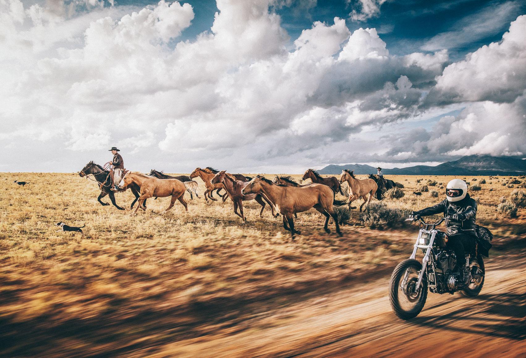 UOT_20151019_Cowboys-0203 2.jpg