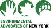 Environmental Advocates of new york - Environmental Advocates of New York aims to protect our air, land, water, and wildlife and the health of all New Yorkers.