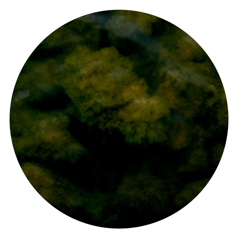 celestial_3.jpg