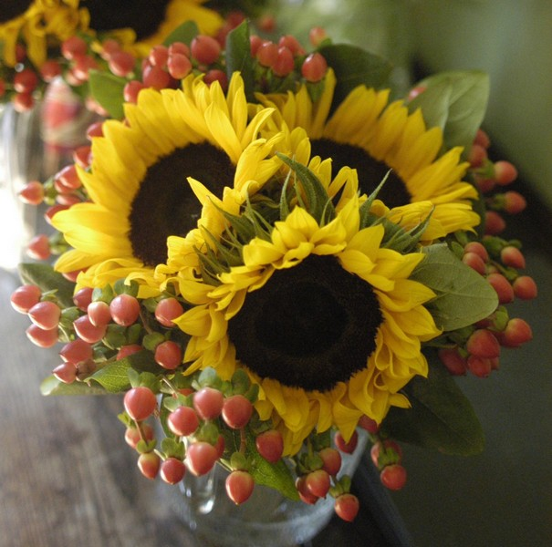 Sunflower and hypericum arrangement