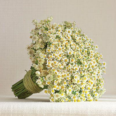 White Daisy Matricaria Bouquet