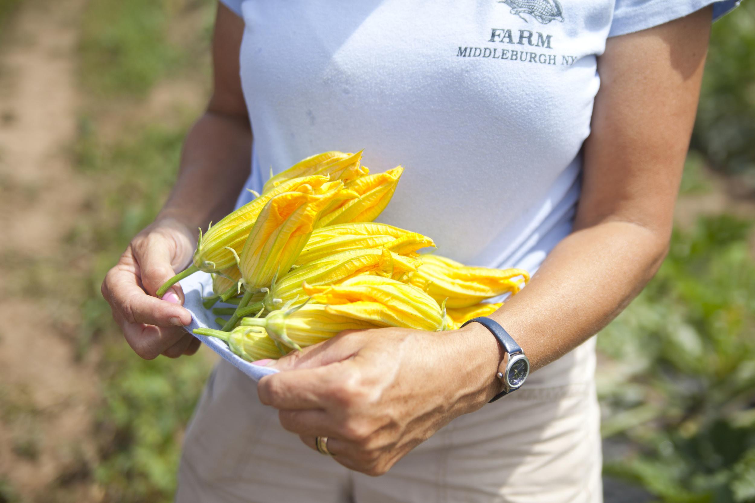 corbin-hill-food-project