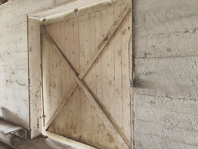 Wait until you see what we are doing with this monster door! 👌🏼👌🏼 #rusticnail #realdeal #designbuild #design #create #interiordesign #woodwork #woodworking #oneoff #oneofone #barndoor #recliamedwood #reclaimed #interiordecor #doors #vintage #chic #whitewashed #blessed #thankful #teamwork