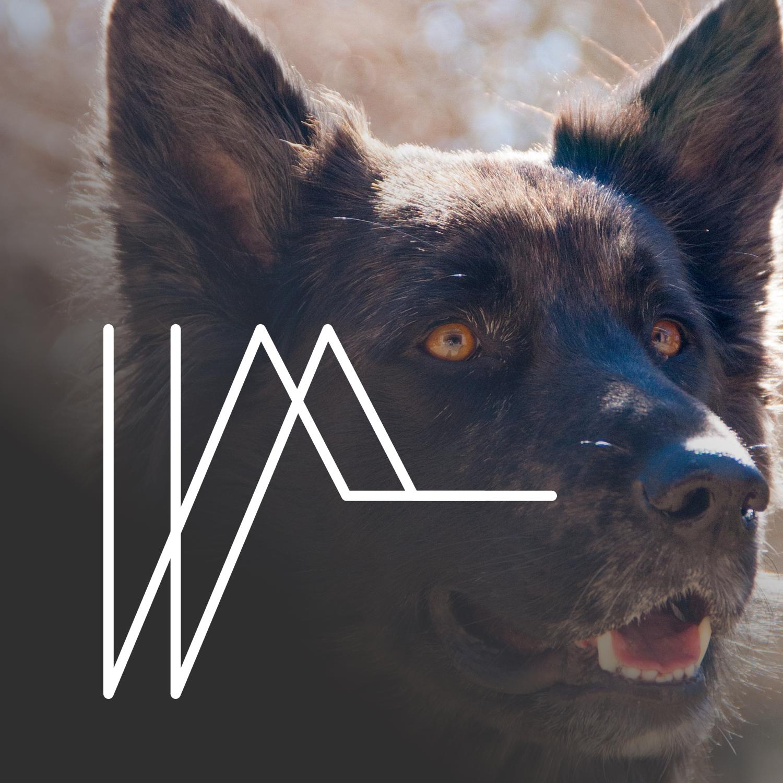 wdd logo.png