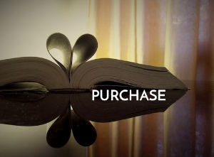 Purchase Narrative Lectionary Resources