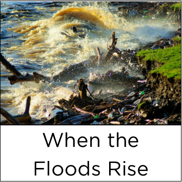 02 when the floods rise copy.png
