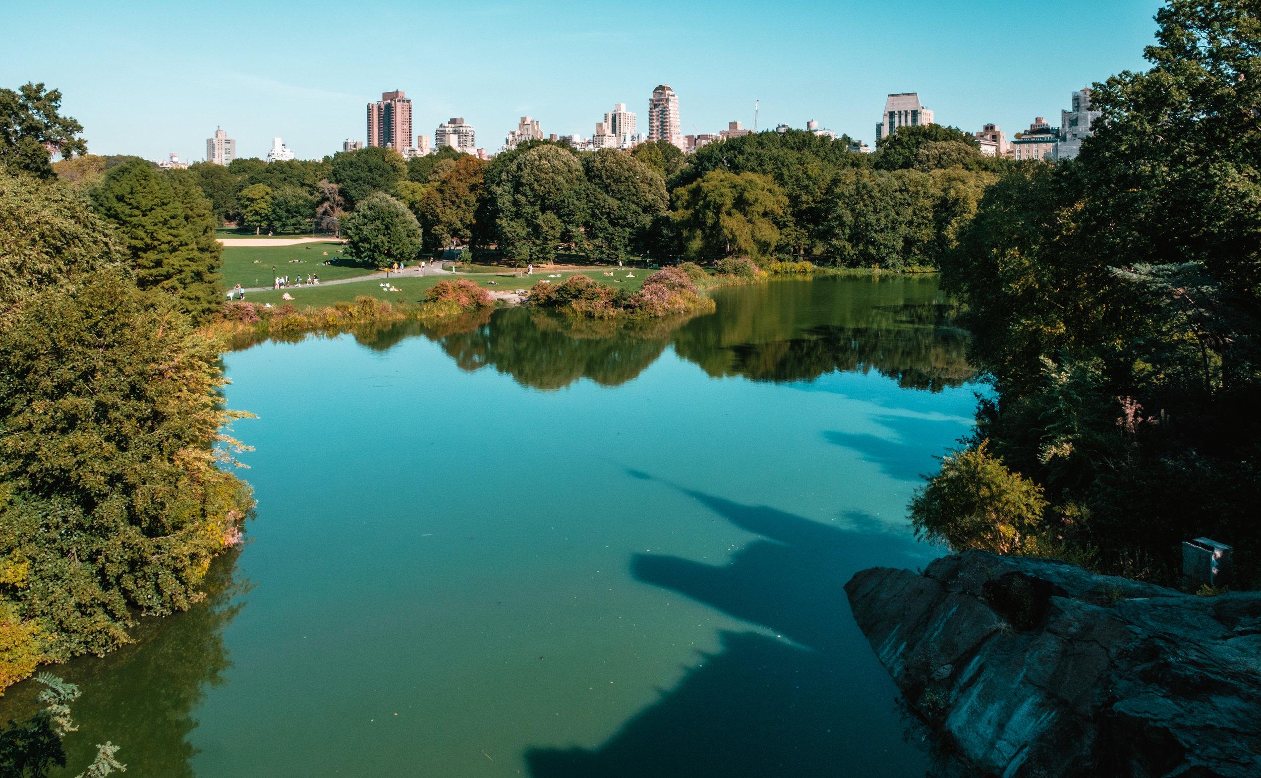 Central Park.