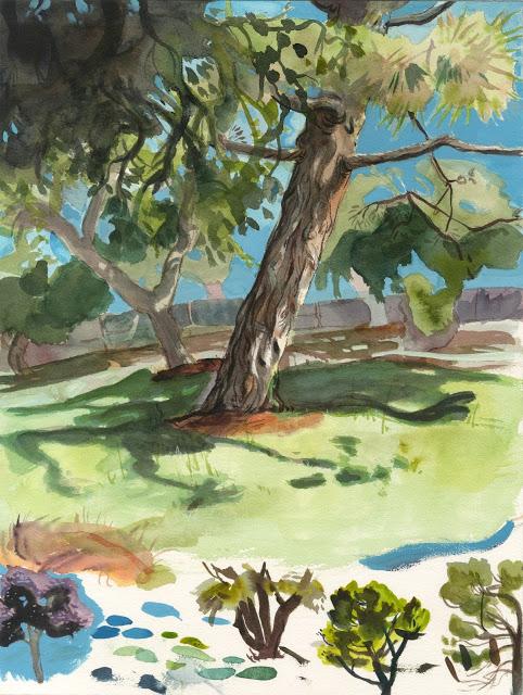 tree_studies_by_spikie-d6kp3bp.jpg