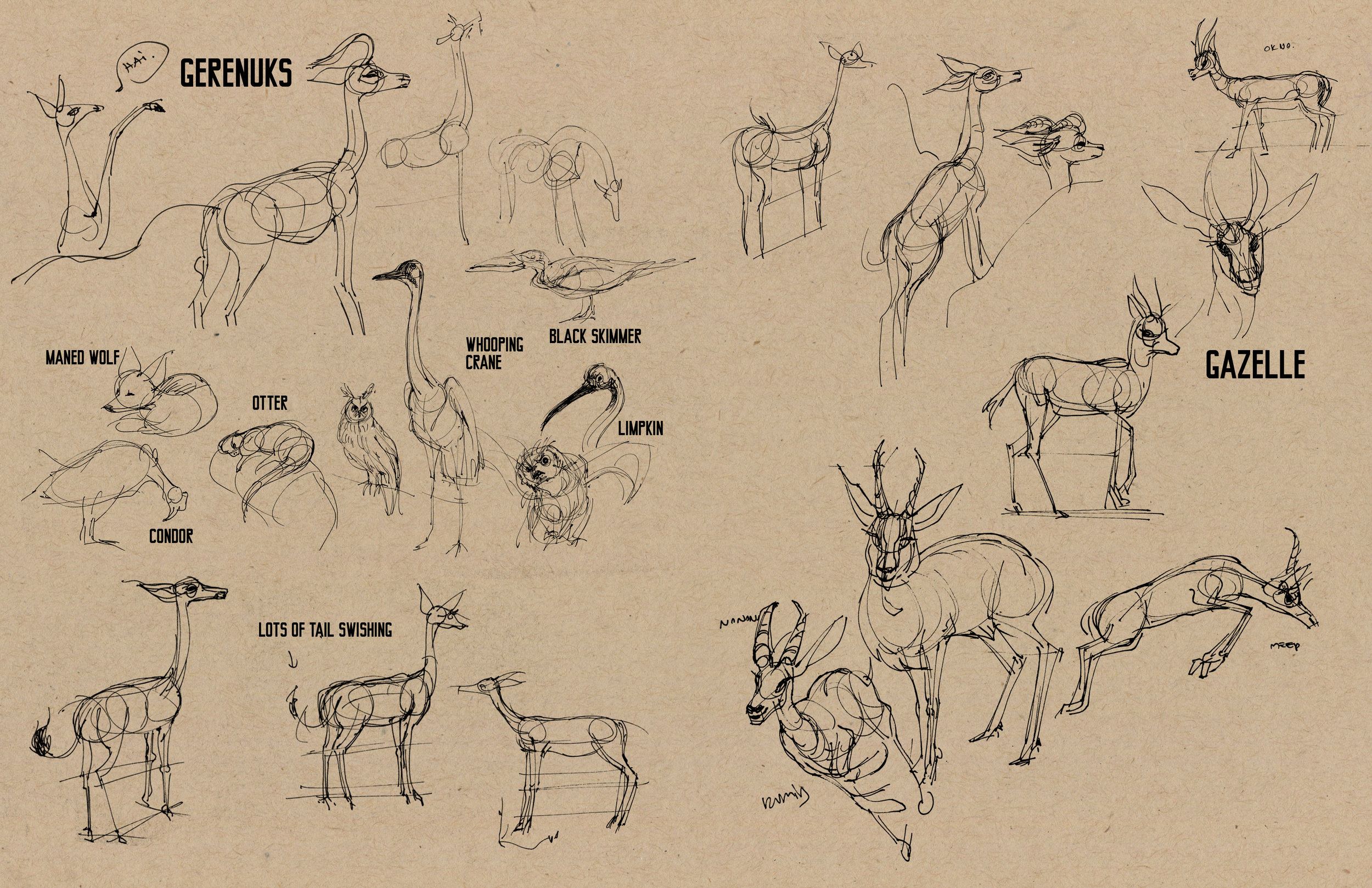 animals04.jpg