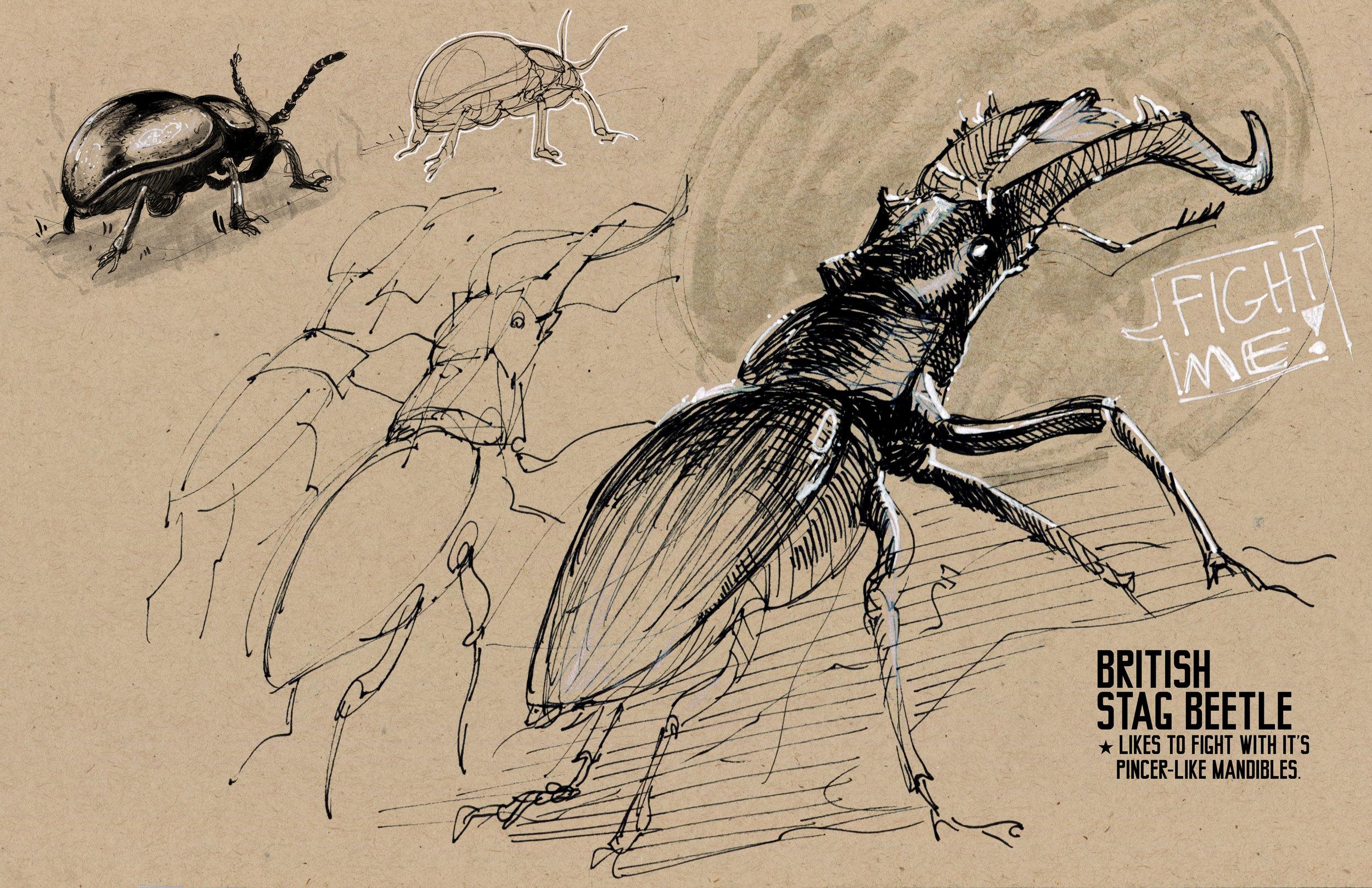 bugs05.jpg