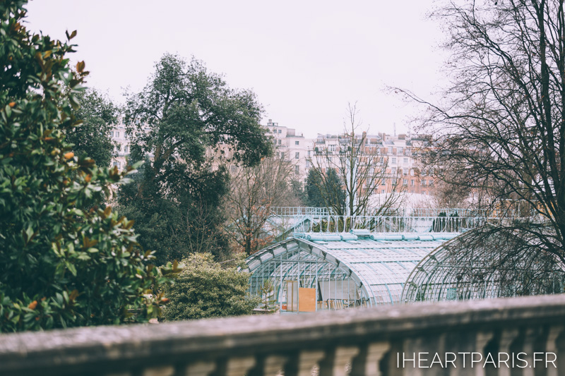 Photographer Paris Postcards Boulogne Greenhouse IheartParisfr