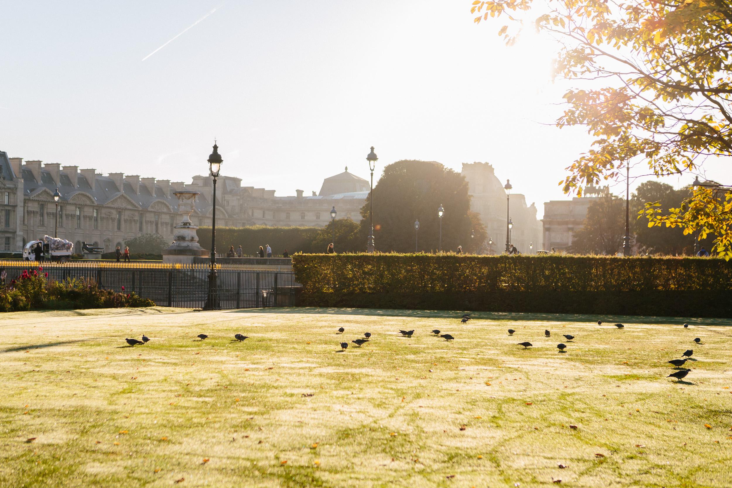 Paris photographer engagement Louvre Tuileries