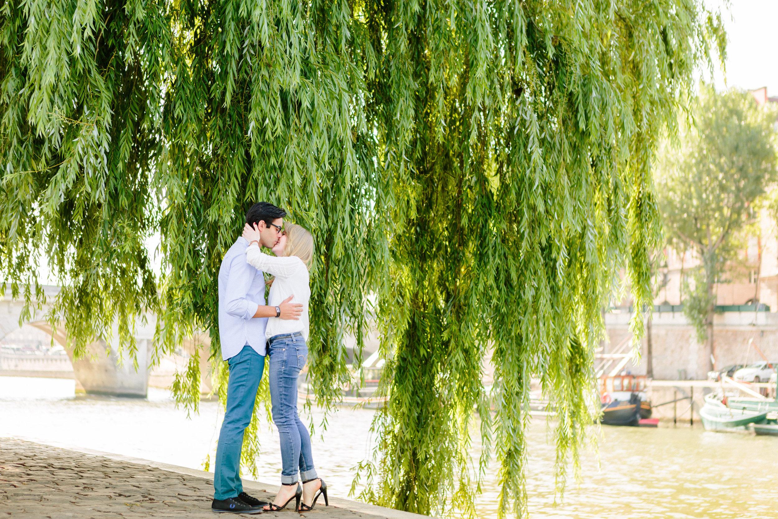 paris photographer couple session by a tree at ile de la cite by the seine river