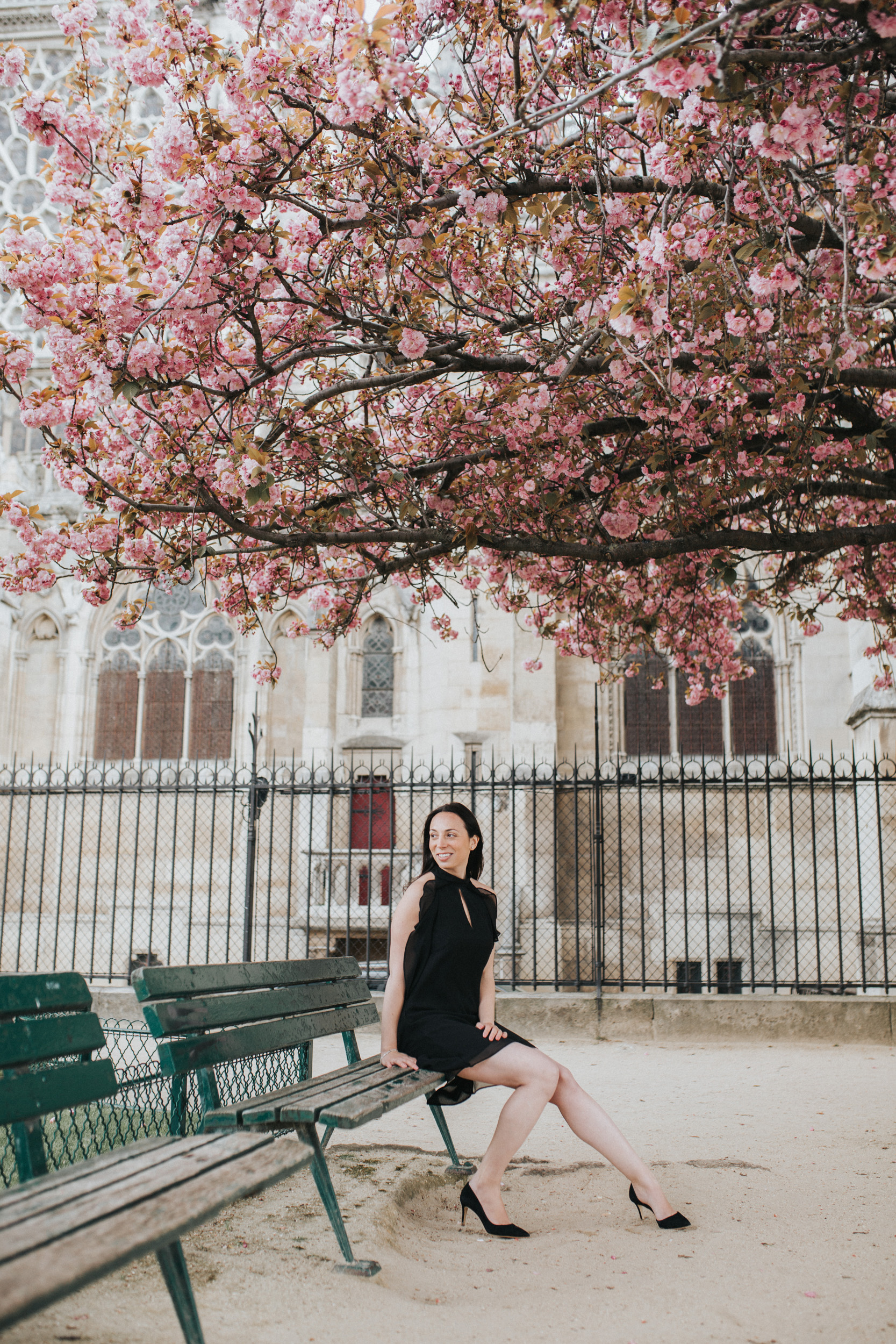 Spring portrait of Rebecca Plotnick founder of Every Day Parisian blog sitting on a bench in front of Notre Dame and cherry blossoms captured by Paris Photographer Federico and Anastasia Guendel IheartParisFr TheFlyingPoodle