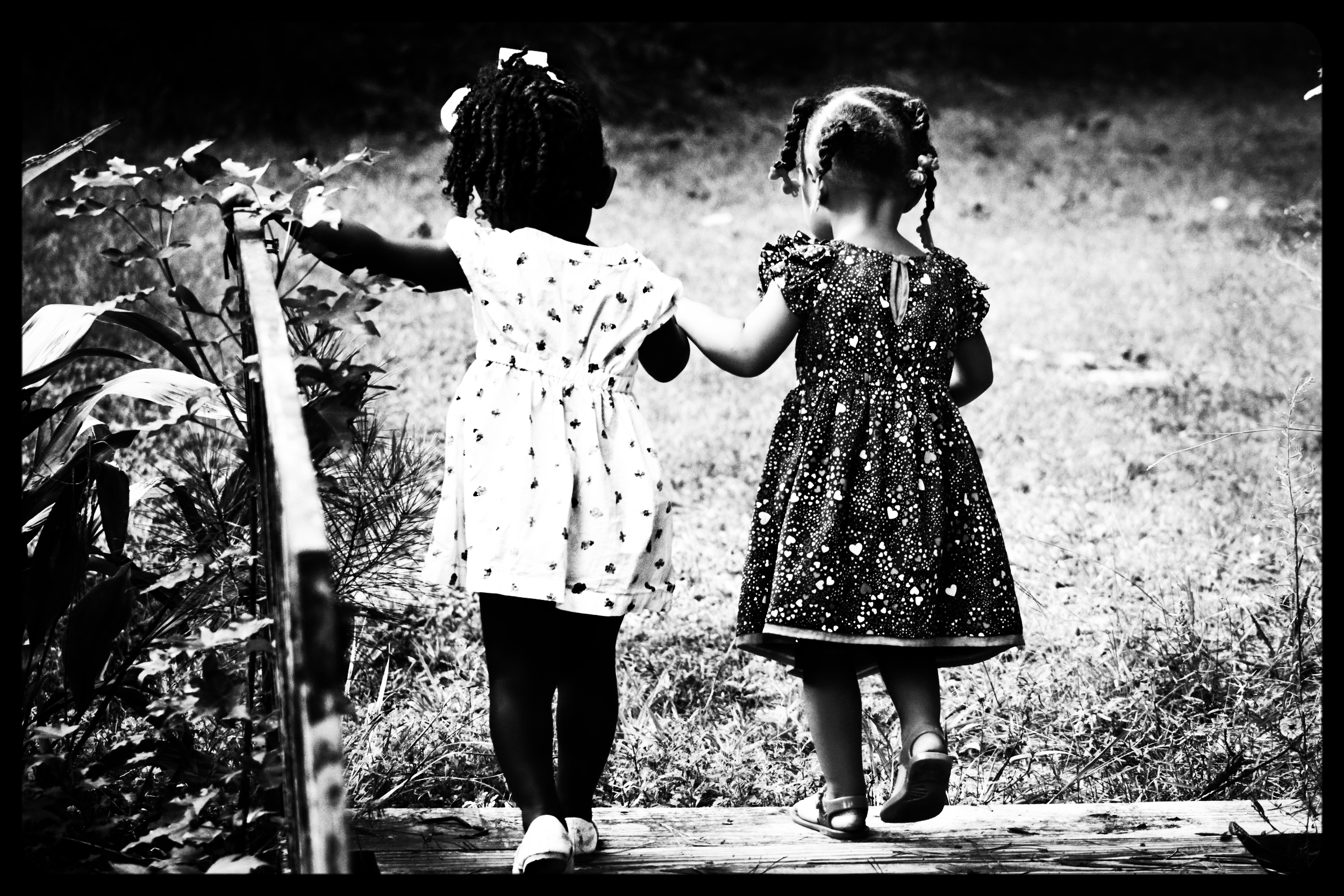 children-girls-kids-50581.jpg