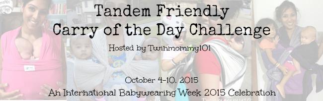 tandem friendly IBW challenge banner.jpg