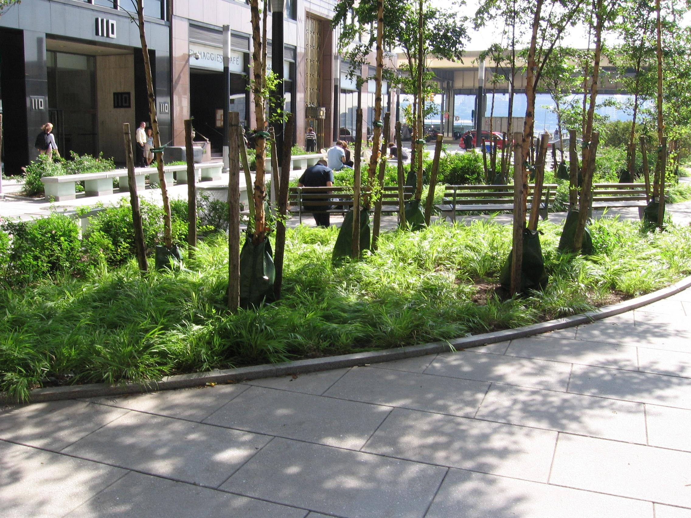Wall Street Park 008.jpg