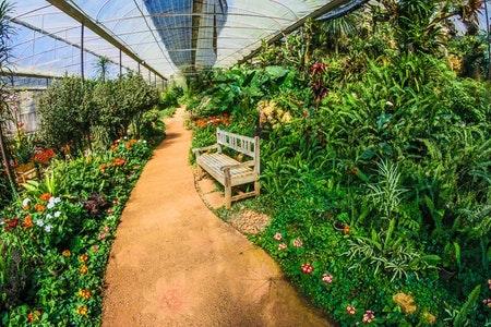 botanical-garden-green-bench.jpeg