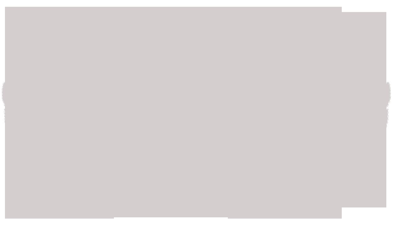 PTG Equus Int winner silver.png
