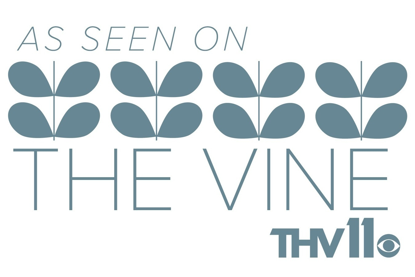 Vine interviews! - Your Restoration Destination! You've seen us on KTHV before and after the storms! We've served Arkansas homeowners and businesses for more than 40 years. Let us help protect your home.