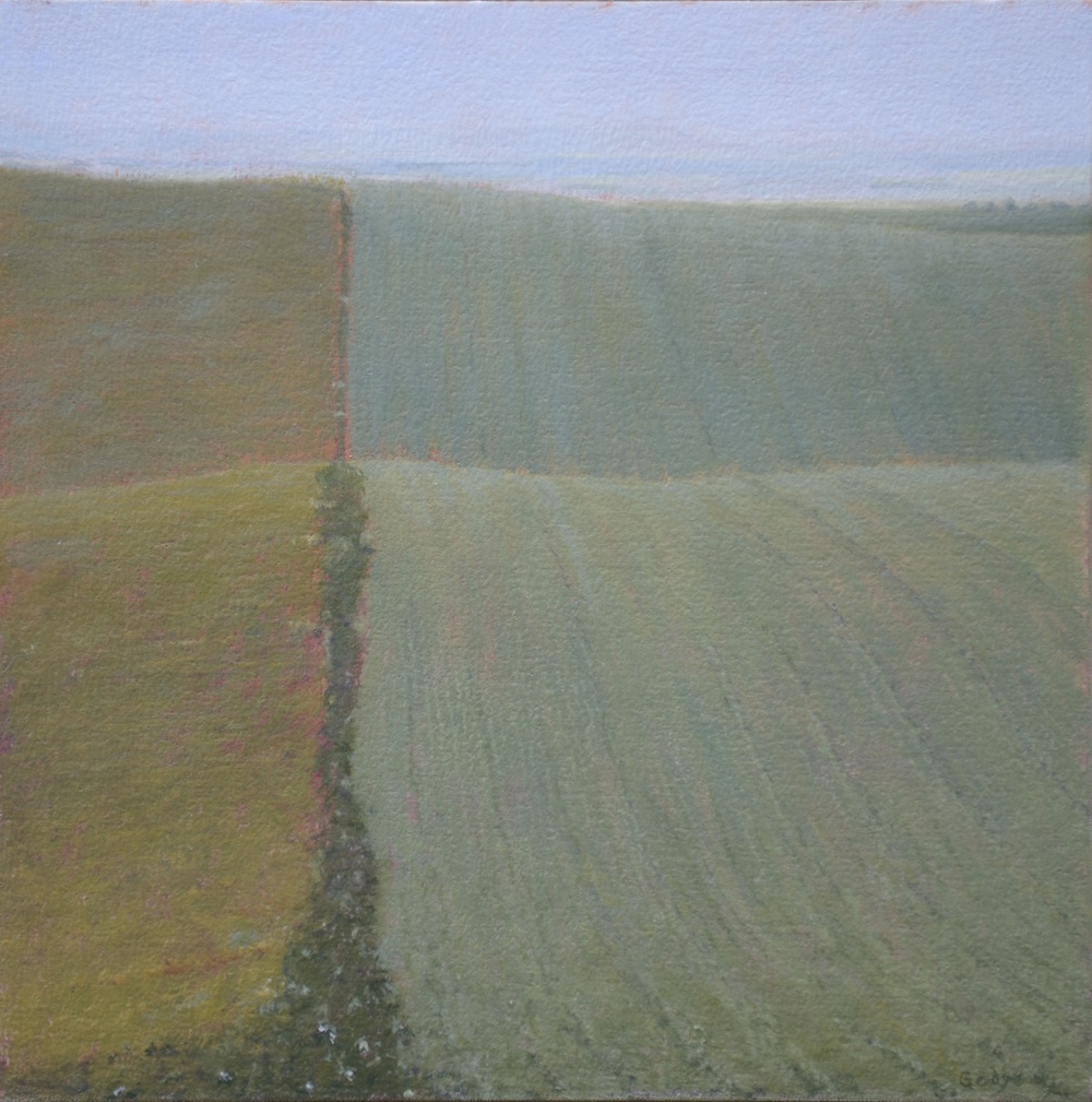 Palouse Perspective