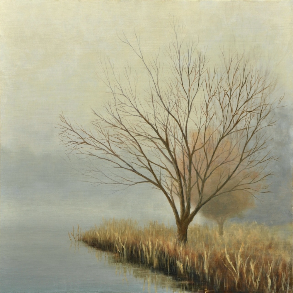 Tree and Reeds in Fog