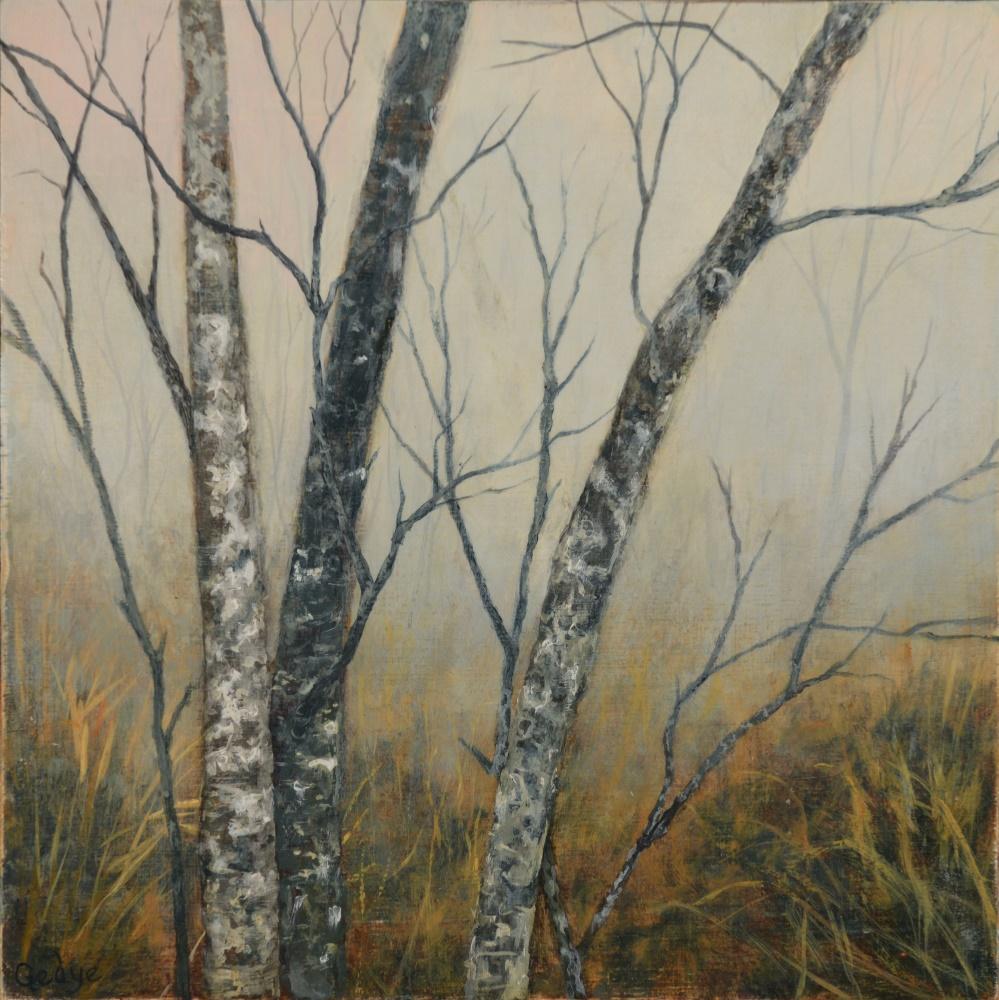 Light Forest Study