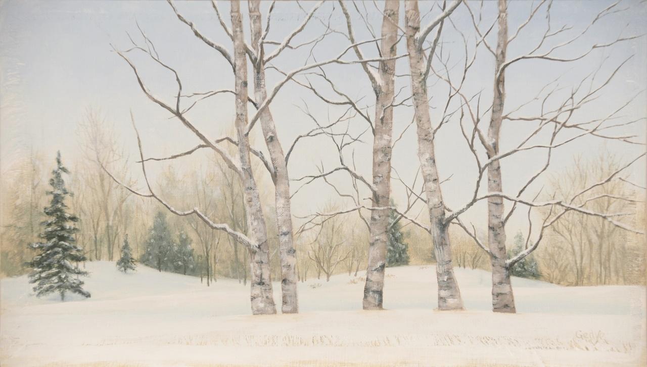 Aspens in Snow